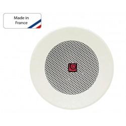 Haut parleur de  plafond RB 401