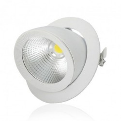 Spot LED Escargot Rond Inclinable et Orientable avec Alimentation Electronique 20W 4000°K