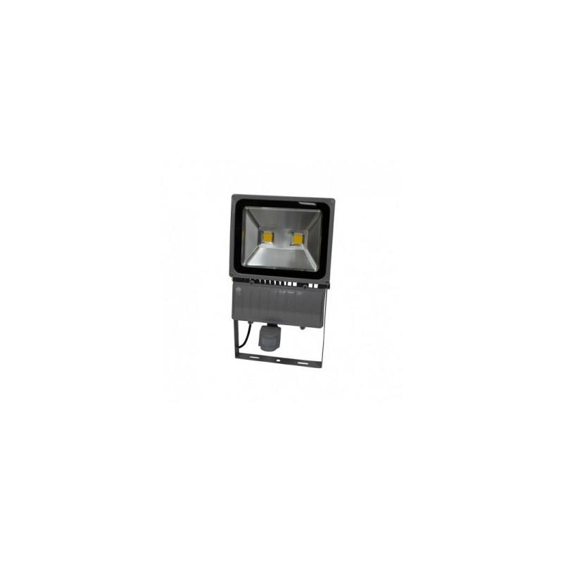 projecteur exterieur led gris avec d tecteur 100w 3000 k sonectrad brn. Black Bedroom Furniture Sets. Home Design Ideas